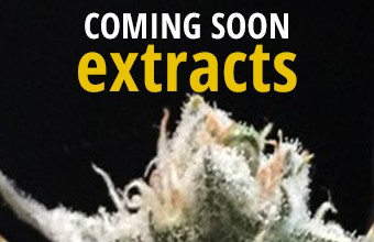 extracts_coming_soon